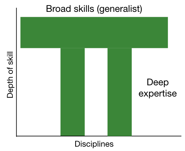 Pi shaped person -  breadth of skills as the bar, depth of expertise as the two downstrokes