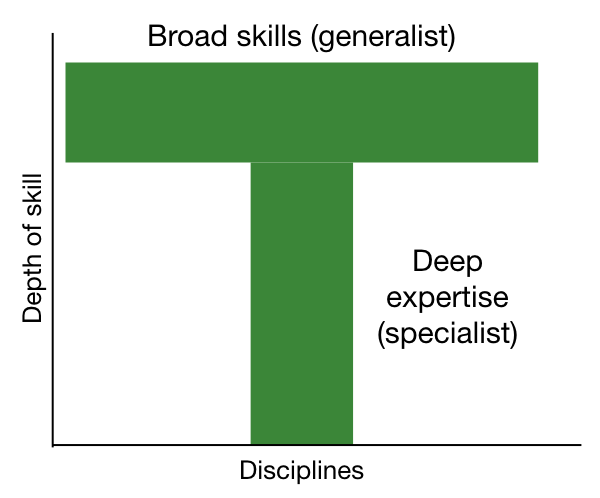 T shaped person - breadth of skills as the bar, depth of expertise as the downstroke