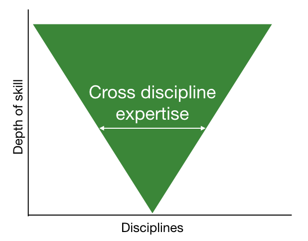 V shaped person - broader cross discipline skills, getting narrower as expertise grows